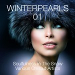 Winterpearls, Vol. 1 — Soulfulness in the Snow — Various Chillout Artists (2013)