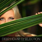 Deep House DJ Selection (2015)