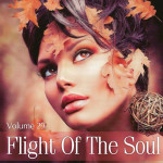 Flight Of The Soul Vol.29 (2015)