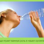 Вода играет важную роль в нашем организме