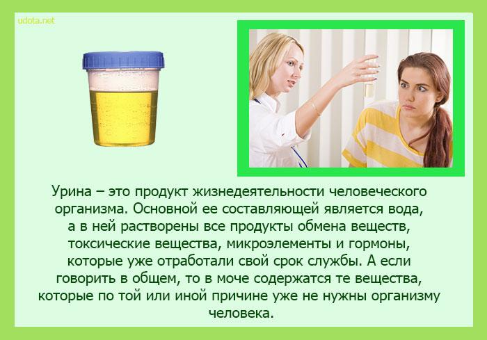 что такое уринотерапия