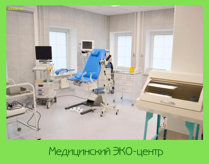 Медицинский ЭКО-центр
