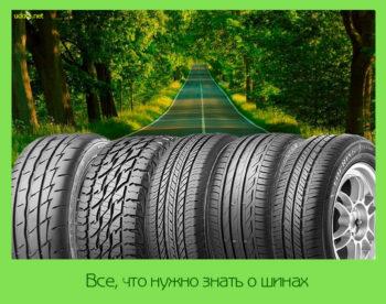 Все, что нужно знать о шинах